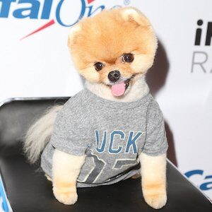 JiffPom private phone number, email id, residence address